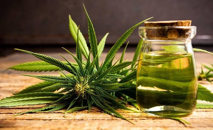 Incredible Health Benefits Of Cannabis